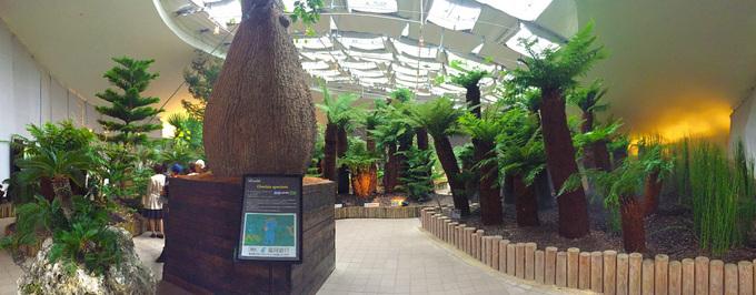 世界7大陸植物園