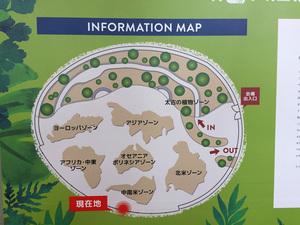 世界7大陸植物園ボード2