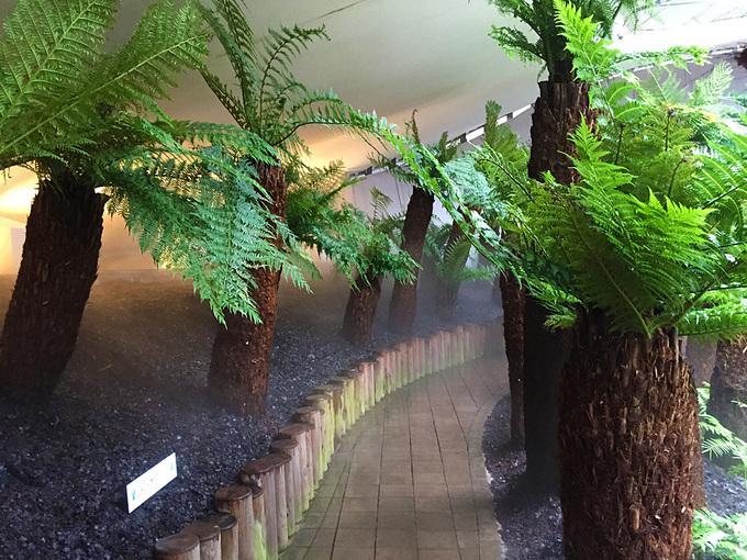 世界7大陸植物園4