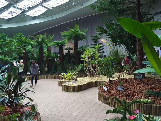 世界7大陸植物園5