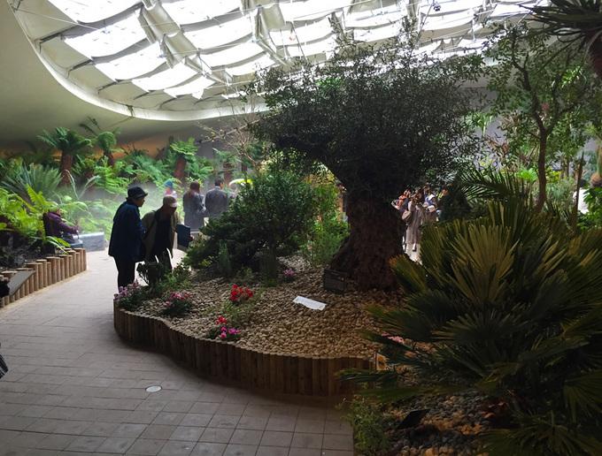 世界7大陸植物園6