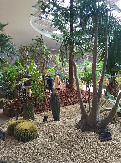 世界7大陸植物園07