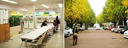 学園大の食堂とイチョウ